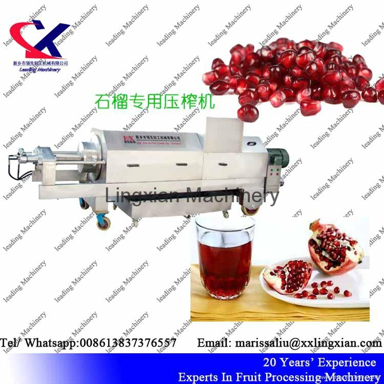 Pomegranate juice Press Machine Screw Juice Press 2