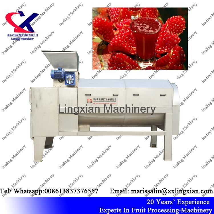 Pomegranate juice Press Machine Screw Juice Press 4