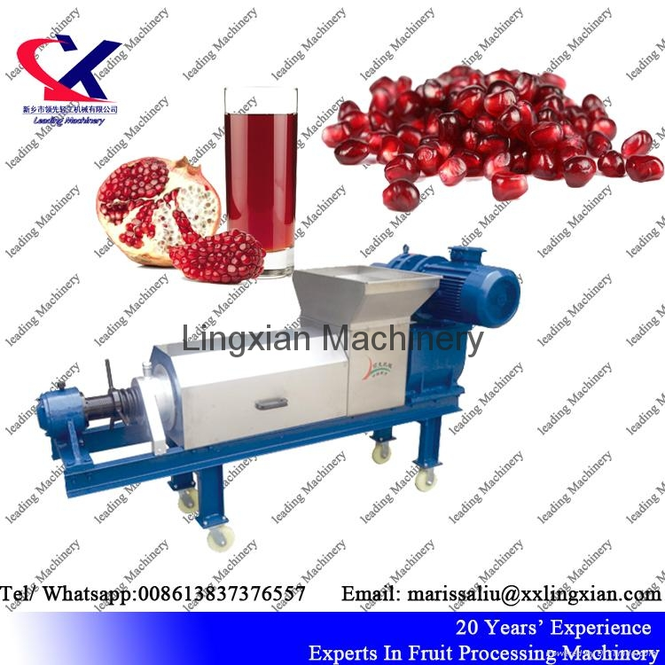 Pomegranate juice Press Machine Screw Juice Press 5