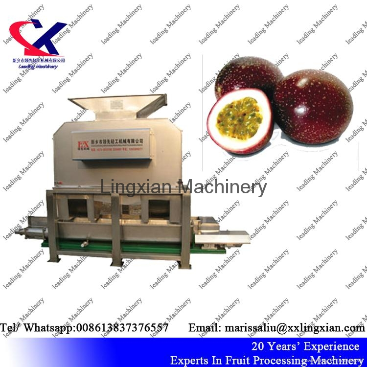 Fruit Juice processing line for citrus pineapple dragon fruit lemon 4