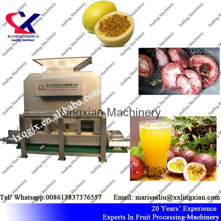 Fruit Juice processing line for citrus pineapple dragon fruit lemon 5