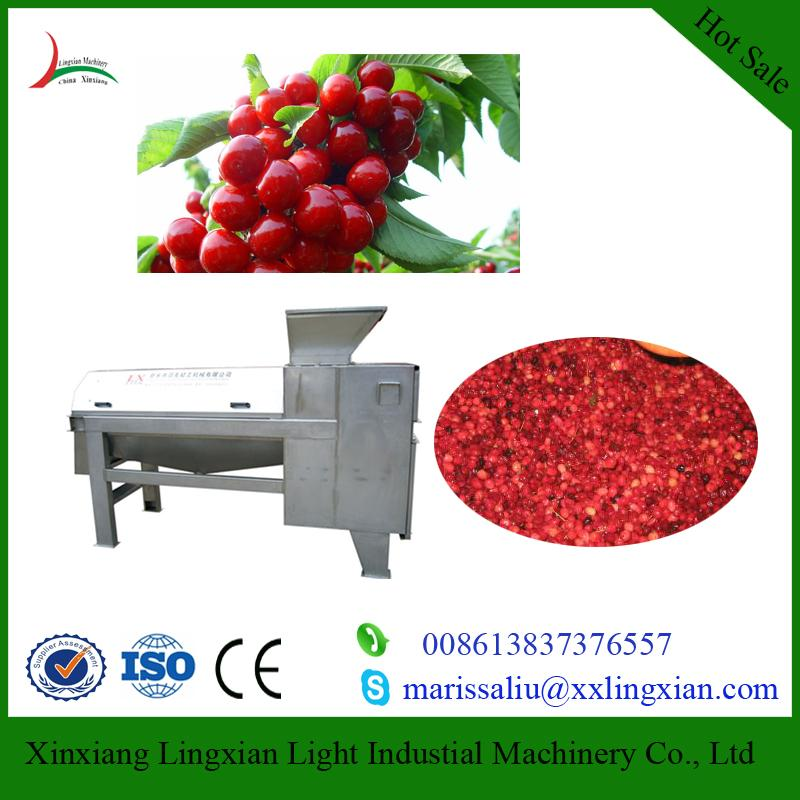 Industrial Cherry Pitters fruit juice processing machinery 1