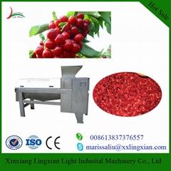Industrial Cherry Pitters fruit juice