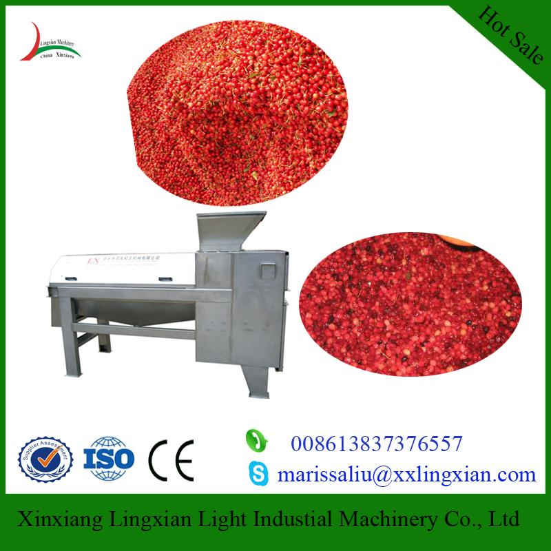 Industrial Cherry Pitters fruit juice processing machinery 3