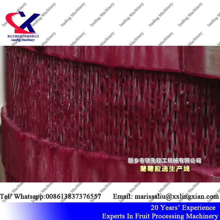 Grape Juice Factory Wine Making Machinery grape pomace drying machine 5