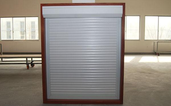 Special Vehicle  Aluminum Roll up Door/Roller Shutter/Roll-up Door 3