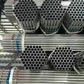 Factory Price Scaffolding Hot Dip Ga  anized Steel Pipe 1