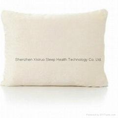 Shenzhen Xisiruo Sleep Health Technology Co. Ltd.