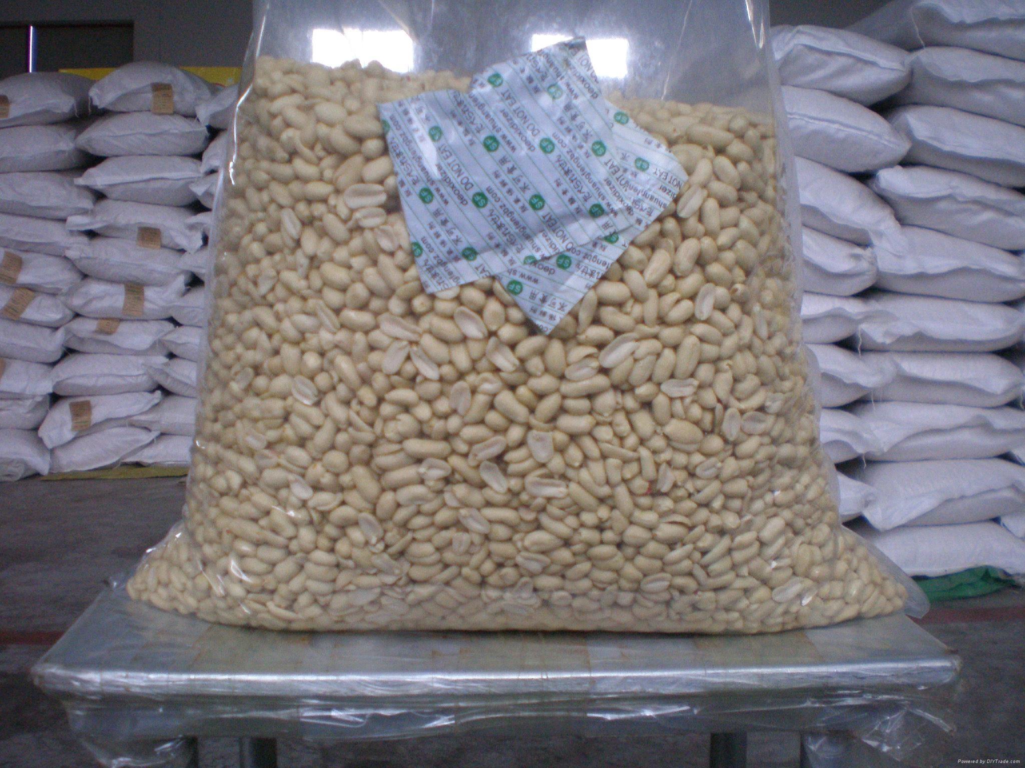 Peanut Kernel 2