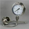 不锈钢耐震隔膜压力表