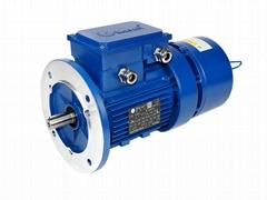 MBF series extra high torque AC brake motor