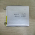 SUTUNG Lithium Ion Polymer Battery