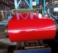 ppgi coils,prepainted steel coil 2