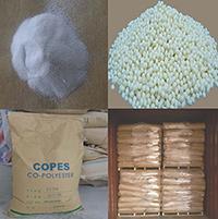 CO-PES Hot Melt Adhesive