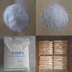 CO-PA Hot Melt Adhesive