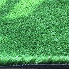 LO22 hotel artificial grass