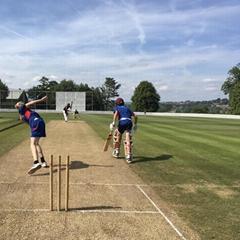 sports cricket field syn