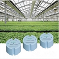 Agricultural Greenhouse 433mhz temperature humidity sensor transmitter  4