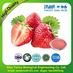 Hot sell Russia high quality freeze-dried strawberry powder
