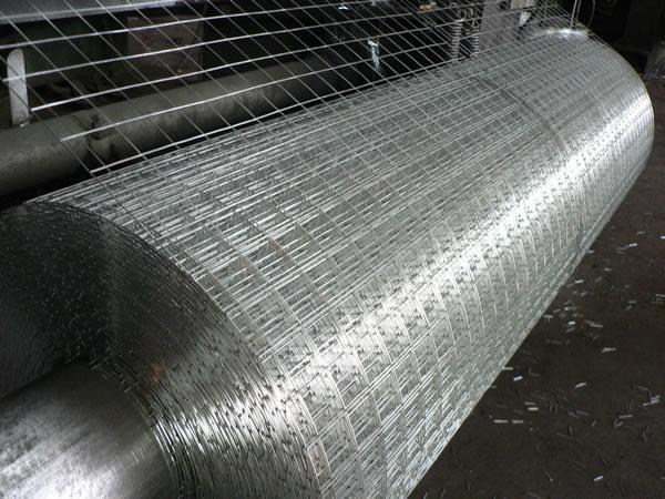 Welded Wire Mesh in Rolls 4