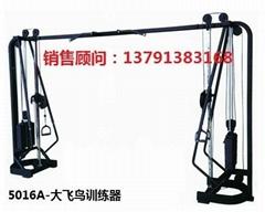 健身房商用大飛鳥練習器必確系列健身器材