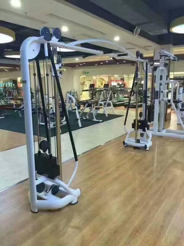 小飛鳥 綜合訓練器 龍門架 拉力器  大飛鳥 健身器材 1