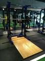 小飛鳥 綜合訓練器 龍門架 拉力器  大飛鳥 健身器材 5