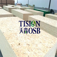 China OSB plywood with best price and high quality