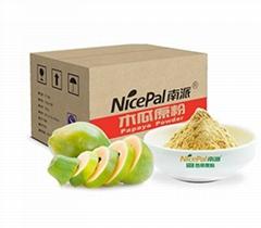 果汁饮品木瓜粉