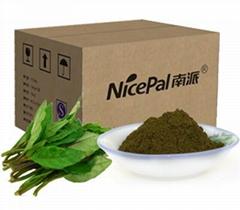 高鈣菜原漿粉