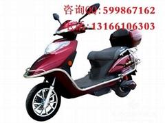 出售金大雪龍兩輪電動車