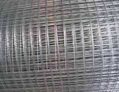 High Quality 2.5mm Bwg10 Green Pvc Coated Welded Mesh Panel