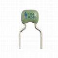 Dipped Radial Ceramic Capacitor -X7R & X5R Dielectric 1