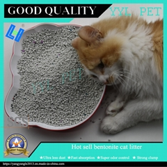 strong clump and scented bentonite cat litter