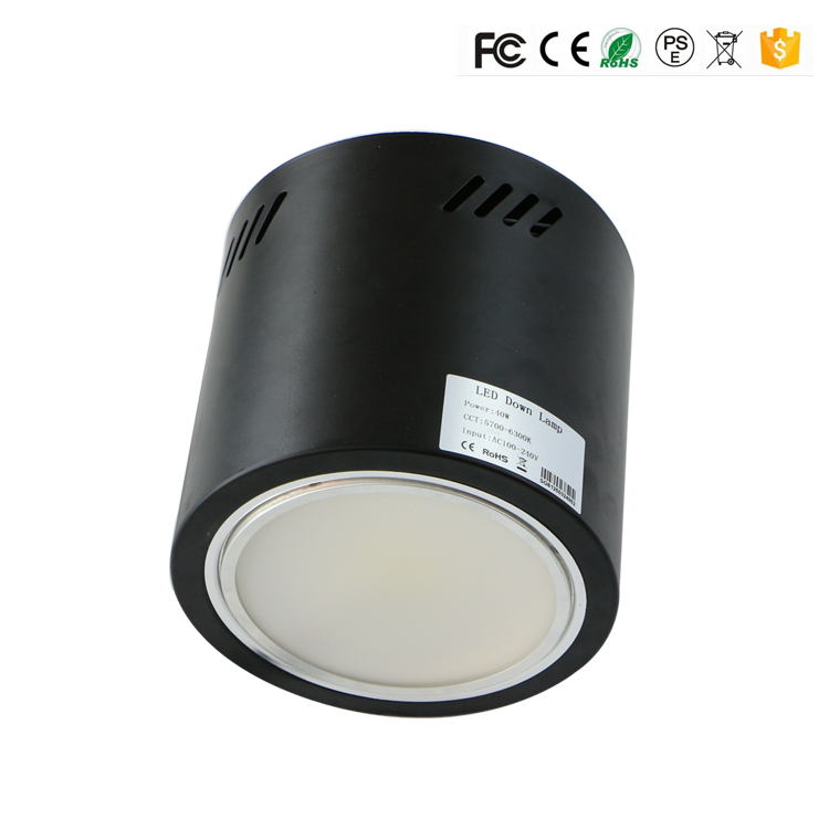6 inch 8inch 40W 50W 60W Dimmable LED Surface Mount Downlight pendant cylinder 2