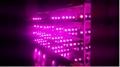 250W  Integrated LED Grow Light 7