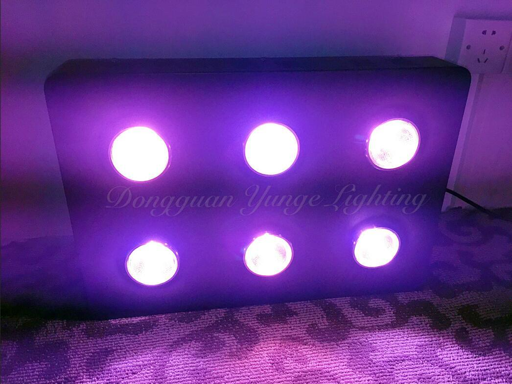 250W COB LED plant grow light 11