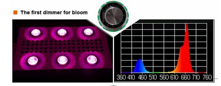 UL Approved 900W COB 5W Chip Led Grow Light 9