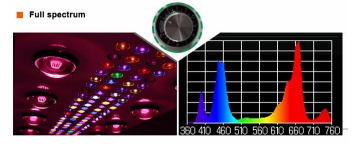 UL Approved 900W COB 5W Chip Led Grow Light 12