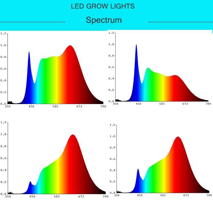 T8-18W LED tube grow light(Led Spectrum:Red:Blue (8:1)) 5
