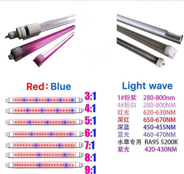 T8-18W LED tube grow light(Led Spectrum:Red:Blue (8:1)) 2