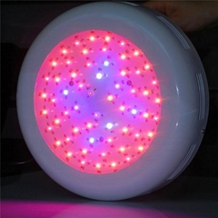 Factory supply greenhouse light full Spectrum 150w UFO LED Indoor grow light