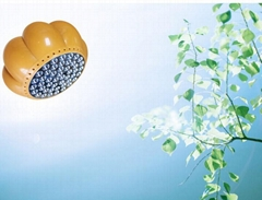 pumpkin greenhouse led grow light  with full spectrum for plant