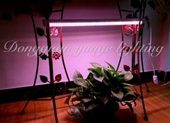 T8 Ledgrowlightsfull spectrum tube2ft3ft 4ft 5ft led plantgrowligh