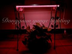 T8 2ft grow light double led strip V-shape hydroponic barplant lamp