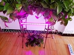 T5 grow light bar 2018 best greenhouse light