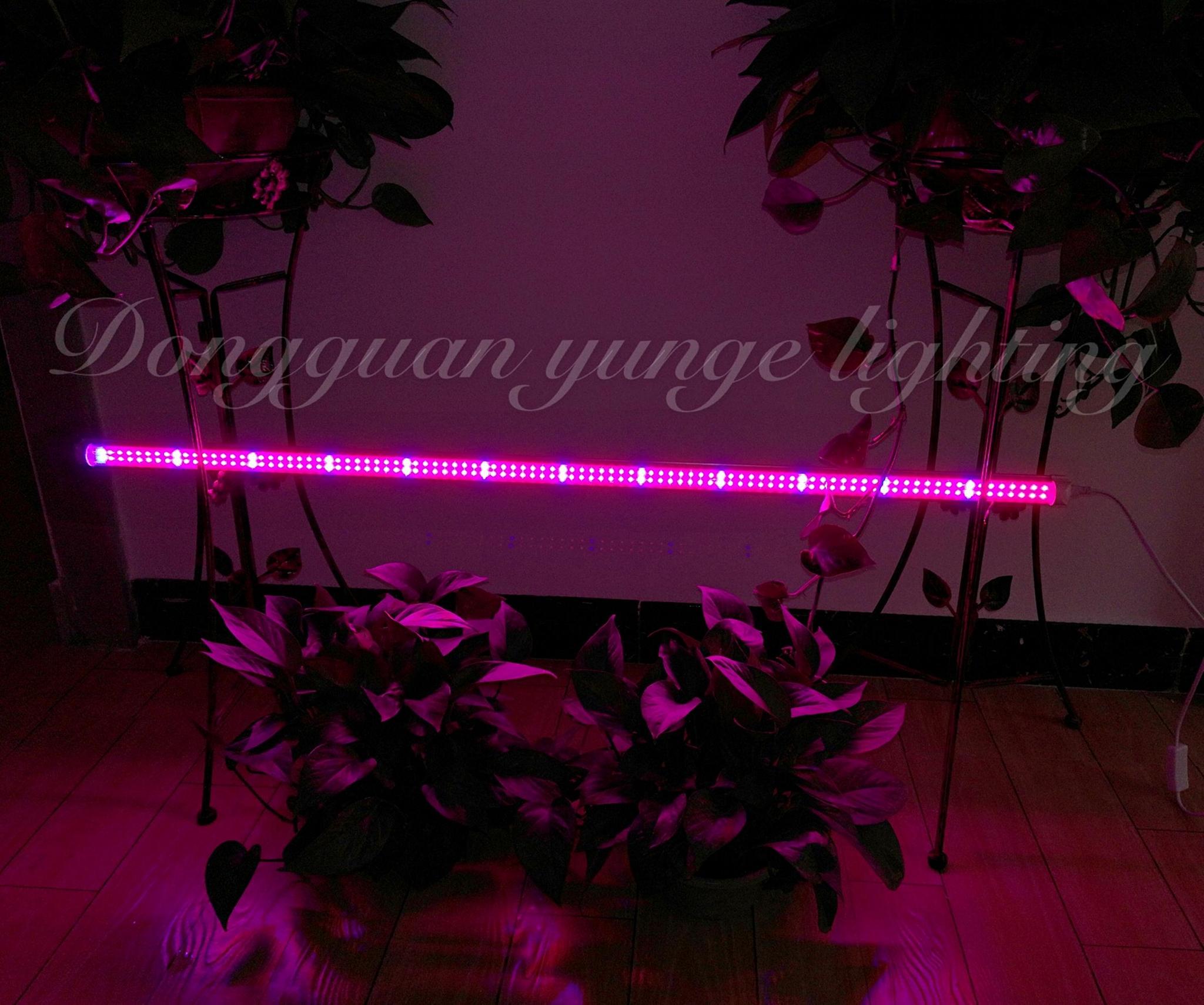 T8 double strips led nurturing lights flower potted light Vegetable fill light 2