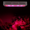 600W high-power led grow light for