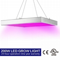 High-power plant grow lighting 200W