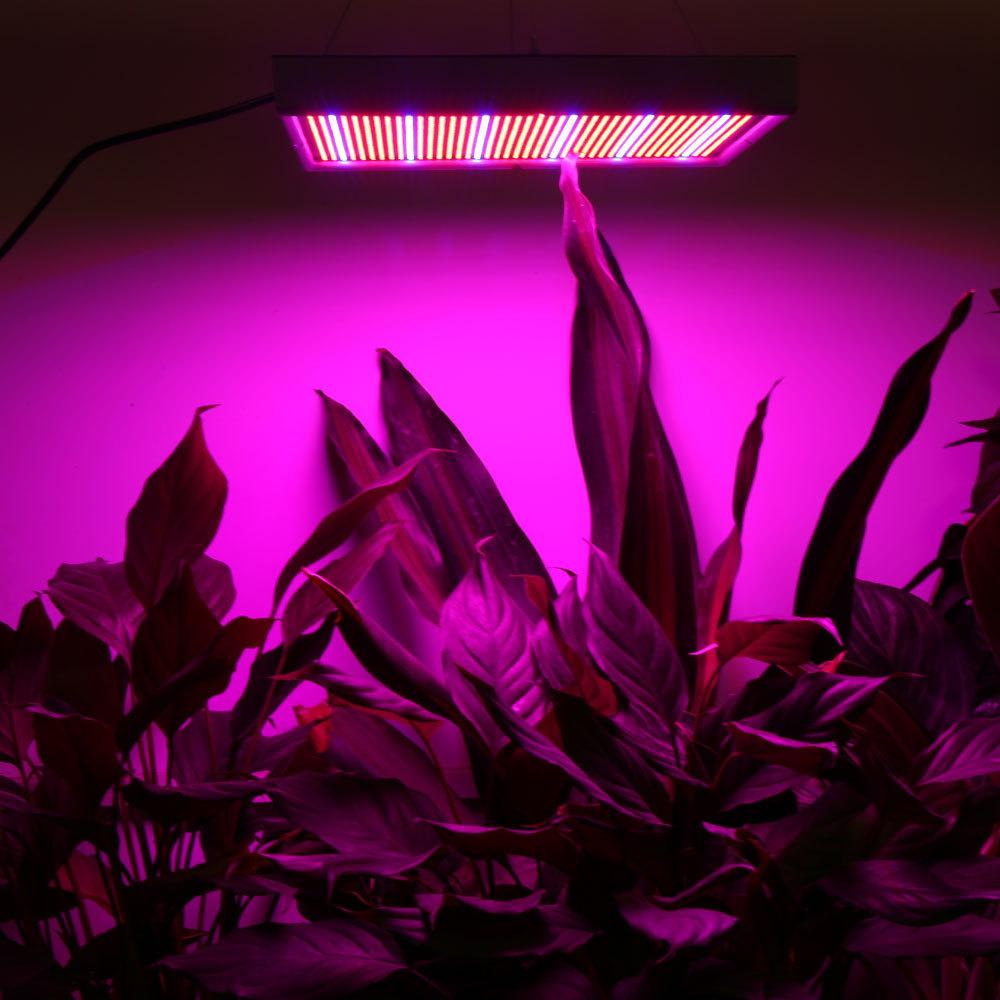 High-power universal grow light 200W vegetation lighting greenhouse light 3